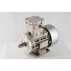 OD063B4W2305P4 Silnik elektryczny EX 3x230/400V 0,18kW