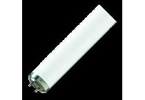 Fluorescent PHILIPS tip TL